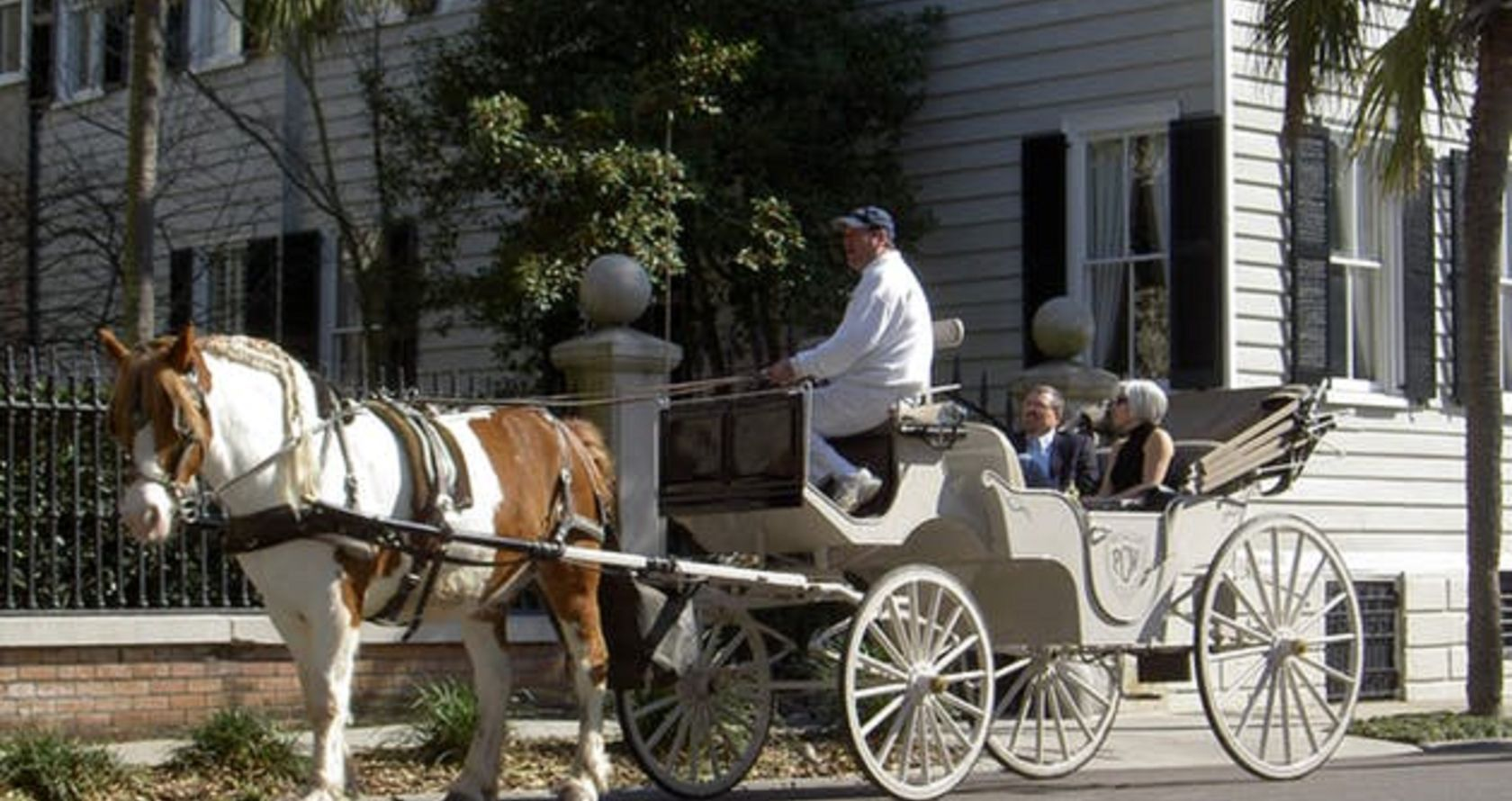horse carriage in Charleston SC